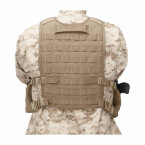 BACK PANEL WARRIOR ASSAULT ELITE OPS COYOTE TAN 02